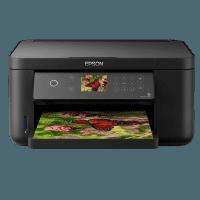 Epson XP-5105 driver impresora. Descargar e instalar controlador gratis